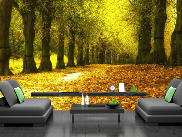 Làm cho ngôi nhà của bạn trở nên sang trọng với khung cảnh thu sang nhờ giấy dán tường