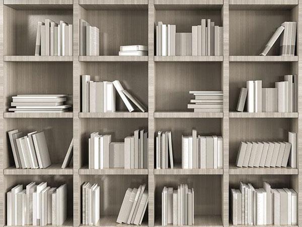 Giấy dán tường LIBRARY dành cho phòng đọc sách