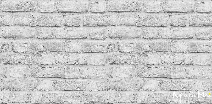 Giấy dán tường LIBRARY 2659-2